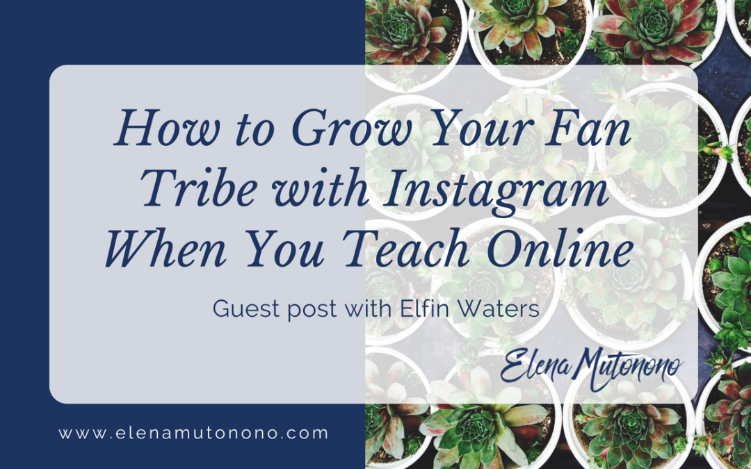 How to Grow Your Fan Tribe with Instagram When You Teach Online (Guest Post)